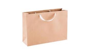 Tjetak Paper Bag