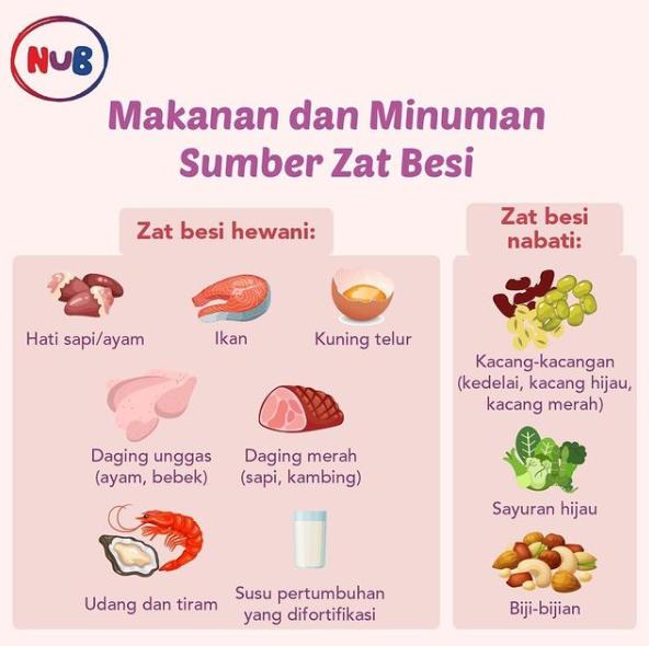 Makana Zat Besi